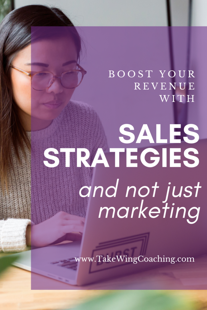 Image with woman at her computer. Boost Your Revenue with Sales Strategies and Not Just Marketing.